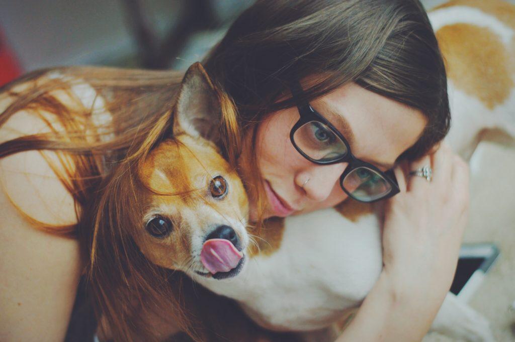zoothérapeute : se soigner avec les animaux